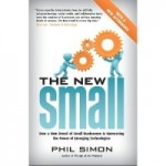 The New Small by Phil Simon